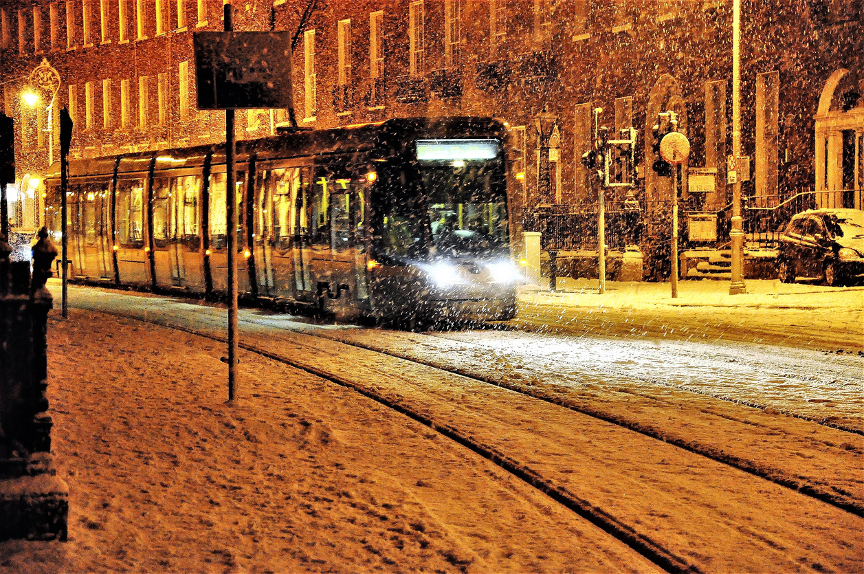 Luas-in-snow