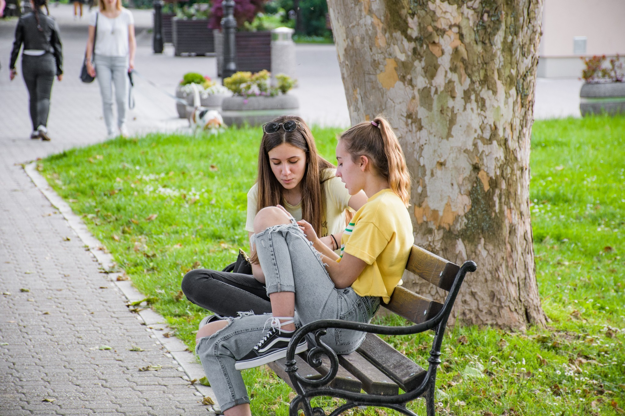 Two girls sitting on a bench in a park woman sitting school happy female young girl nature park t20 e V94z W